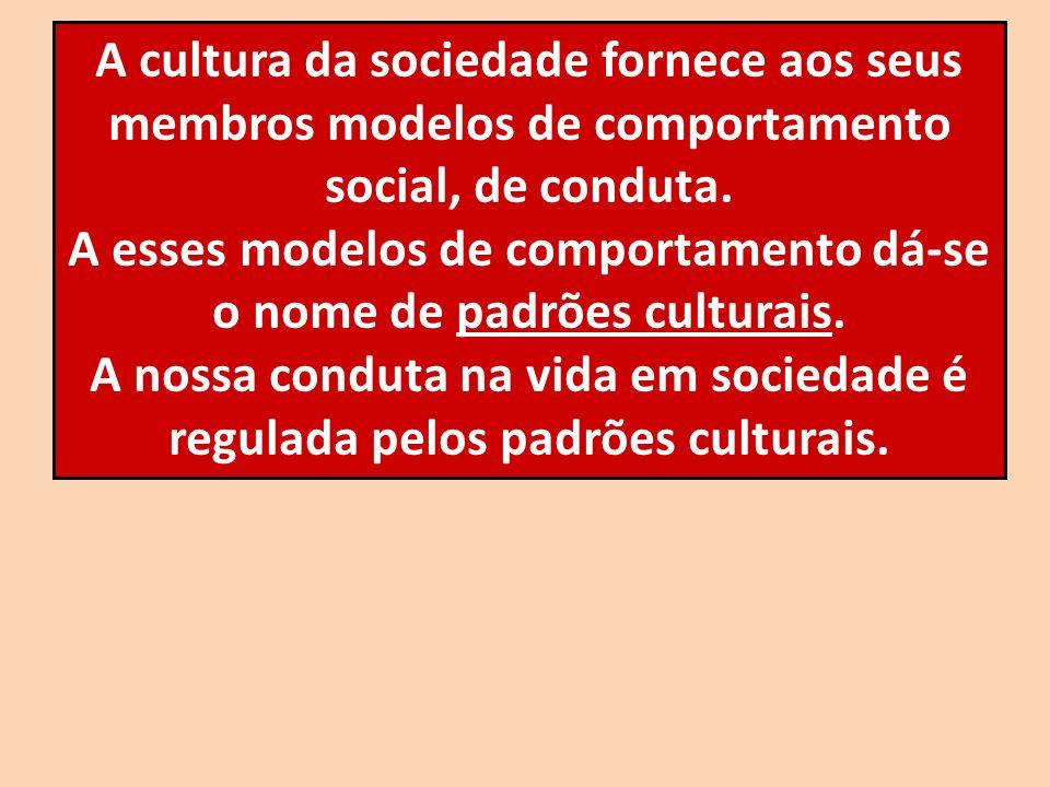 A cultura da sociedade fornece aos seus membros modelos de comportamento social, de conduta. A esses modelos de comportamento dá-se o nome de padrões