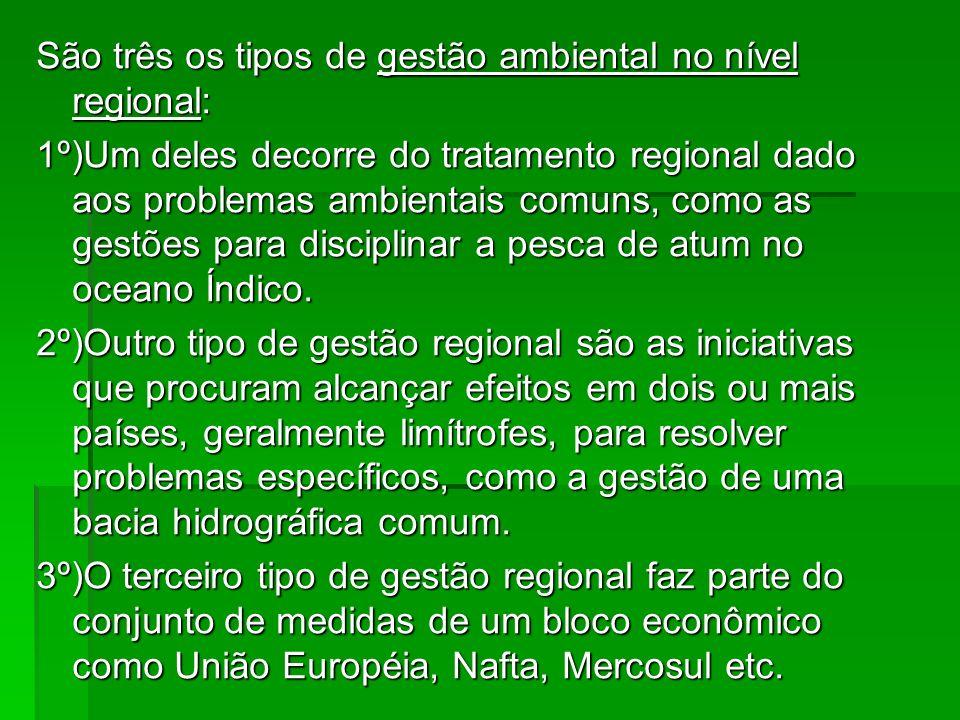 São três os tipos de gestão ambiental no nível regional: 1º)Um deles decorre do tratamento regional dado aos problemas ambientais comuns, como as gest