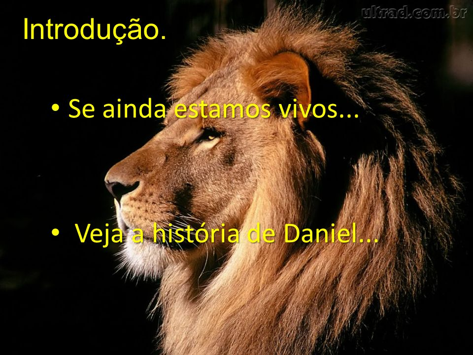 Se ainda estamos vivos... Se ainda estamos vivos... Veja a história de Daniel... Veja a história de Daniel... Introdução.