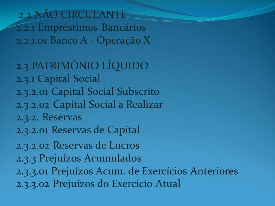 2.2 NÃO CIRCULANTE 2.2.1 Empréstimos Bancários 2.2.1.01 Banco A - Operação X 2.3 PATRIMÔNIO LÍQUIDO 2.3.1 Capital Social 2.3.2.01 Capital Social Subsc