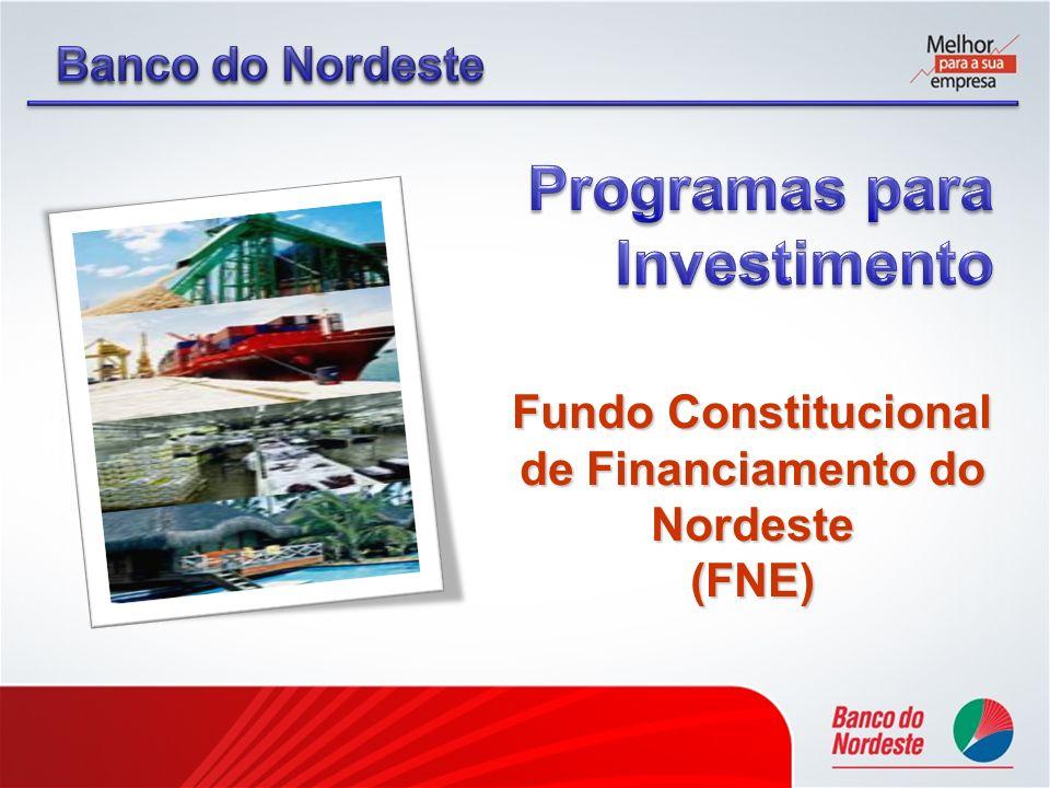 FNE Apoiar a implantação, expansão, modernização e relocalização de empreendimentos rurais, industriais, comerciais e de prestação de serviços, inclusive o turismo, além da infra-estrutura privada.
