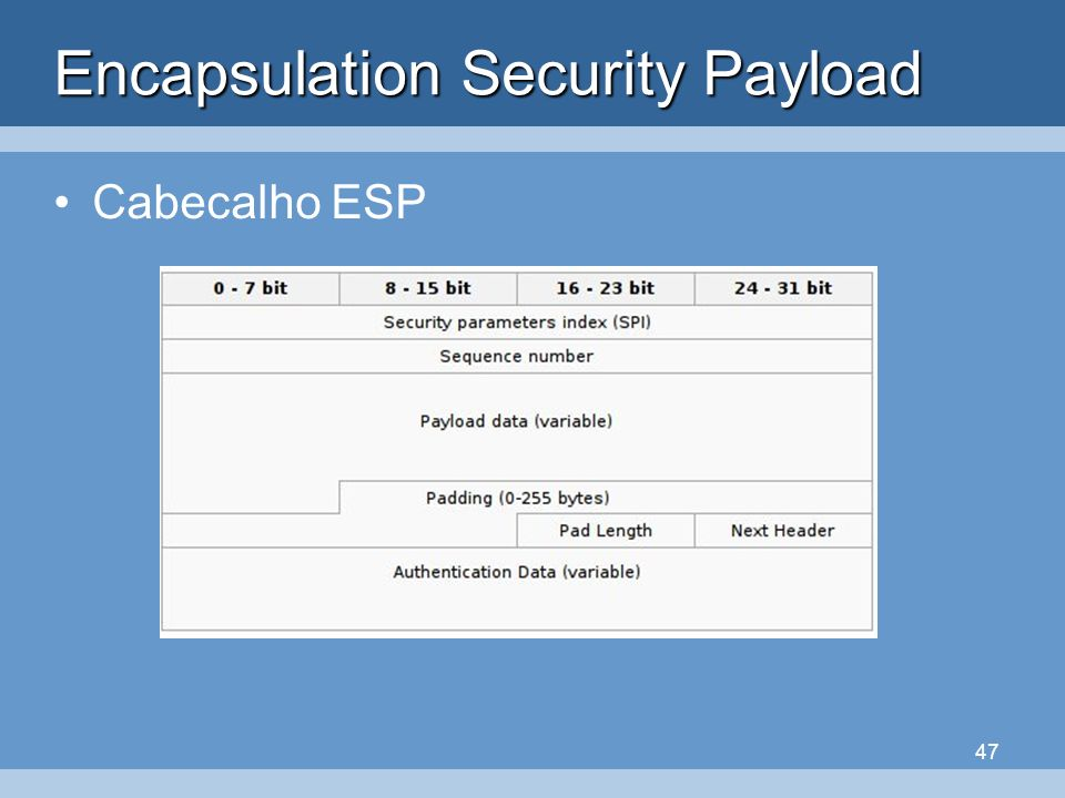 47 Encapsulation Security Payload Cabecalho ESP