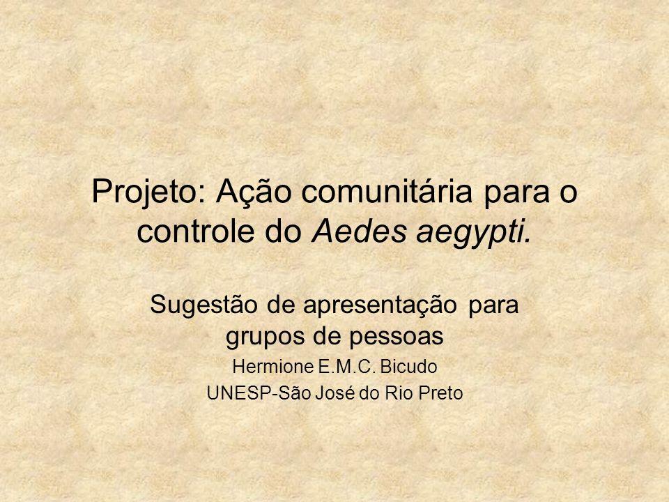 Projeto: Ação comunitária para o controle do Aedes aegypti. Sugestão de apresentação para grupos de pessoas Hermione E.M.C. Bicudo UNESP-São José do R