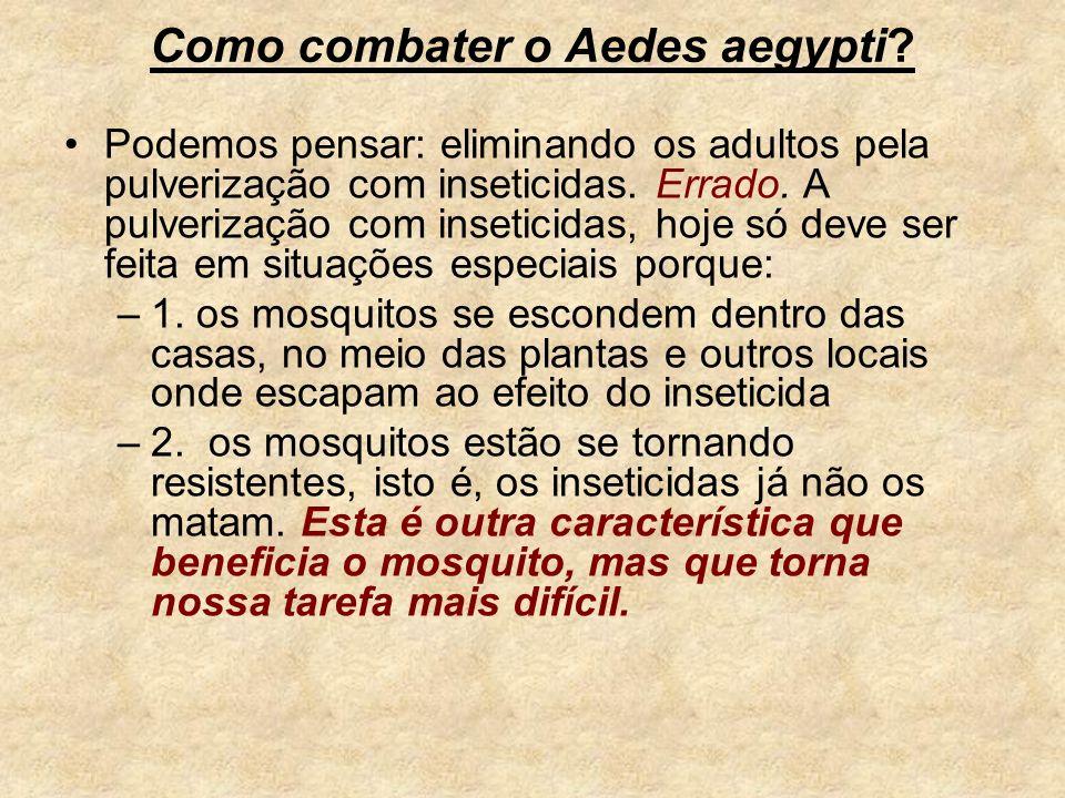 Como combater o Aedes aegypti? Podemos pensar: eliminando os adultos pela pulverização com inseticidas. Errado. A pulverização com inseticidas, hoje s