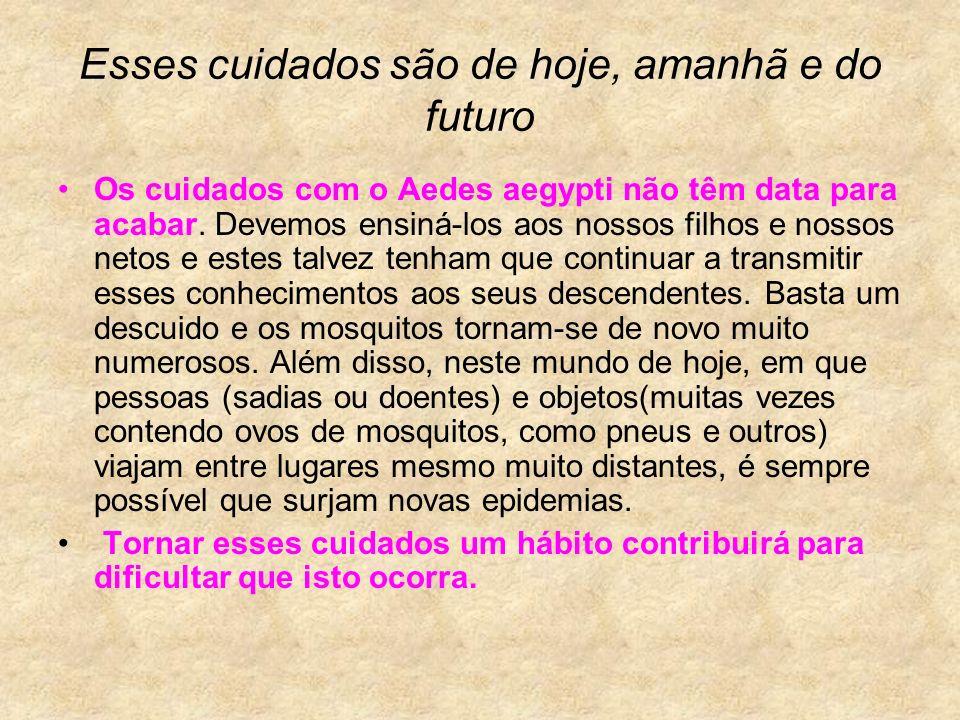 Esses cuidados são de hoje, amanhã e do futuro Os cuidados com o Aedes aegypti não têm data para acabar. Devemos ensiná-los aos nossos filhos e nossos