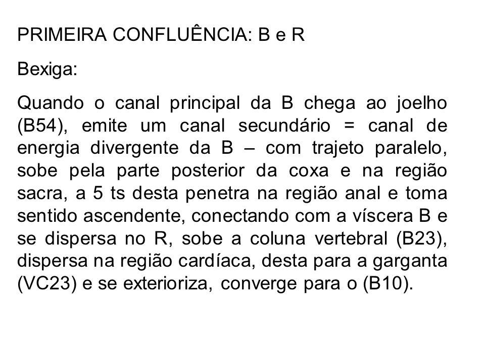 PRIMEIRA CONFLUÊNCIA: B e R Bexiga: Quando o canal principal da B chega ao joelho (B54), emite um canal secundário = canal de energia divergente da B