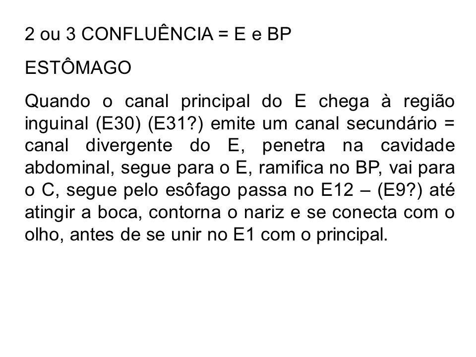 2 ou 3 CONFLUÊNCIA = E e BP ESTÔMAGO Quando o canal principal do E chega à região inguinal (E30) (E31?) emite um canal secundário = canal divergente d