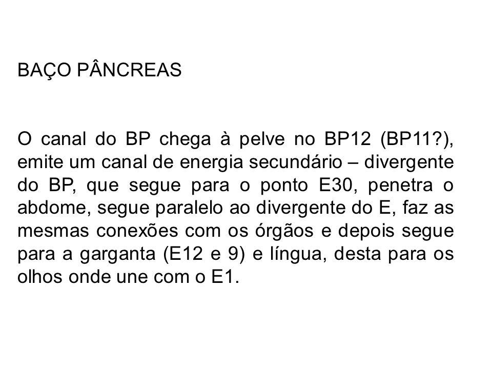 BAÇO PÂNCREAS O canal do BP chega à pelve no BP12 (BP11?), emite um canal de energia secundário – divergente do BP, que segue para o ponto E30, penetr