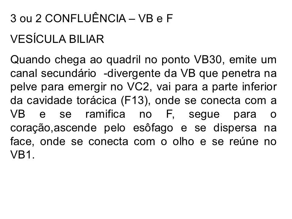 3 ou 2 CONFLUÊNCIA – VB e F VESÍCULA BILIAR Quando chega ao quadril no ponto VB30, emite um canal secundário -divergente da VB que penetra na pelve pa