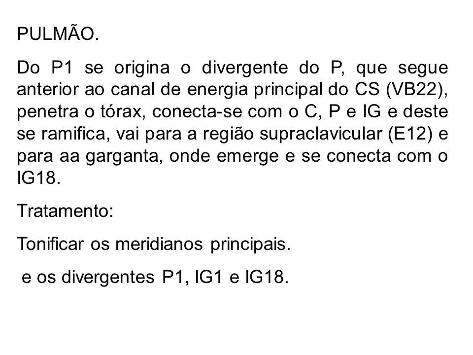 PULMÃO. Do P1 se origina o divergente do P, que segue anterior ao canal de energia principal do CS (VB22), penetra o tórax, conecta-se com o C, P e IG