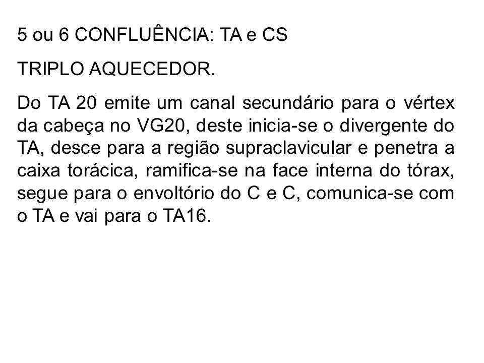 5 ou 6 CONFLUÊNCIA: TA e CS TRIPLO AQUECEDOR. Do TA 20 emite um canal secundário para o vértex da cabeça no VG20, deste inicia-se o divergente do TA,