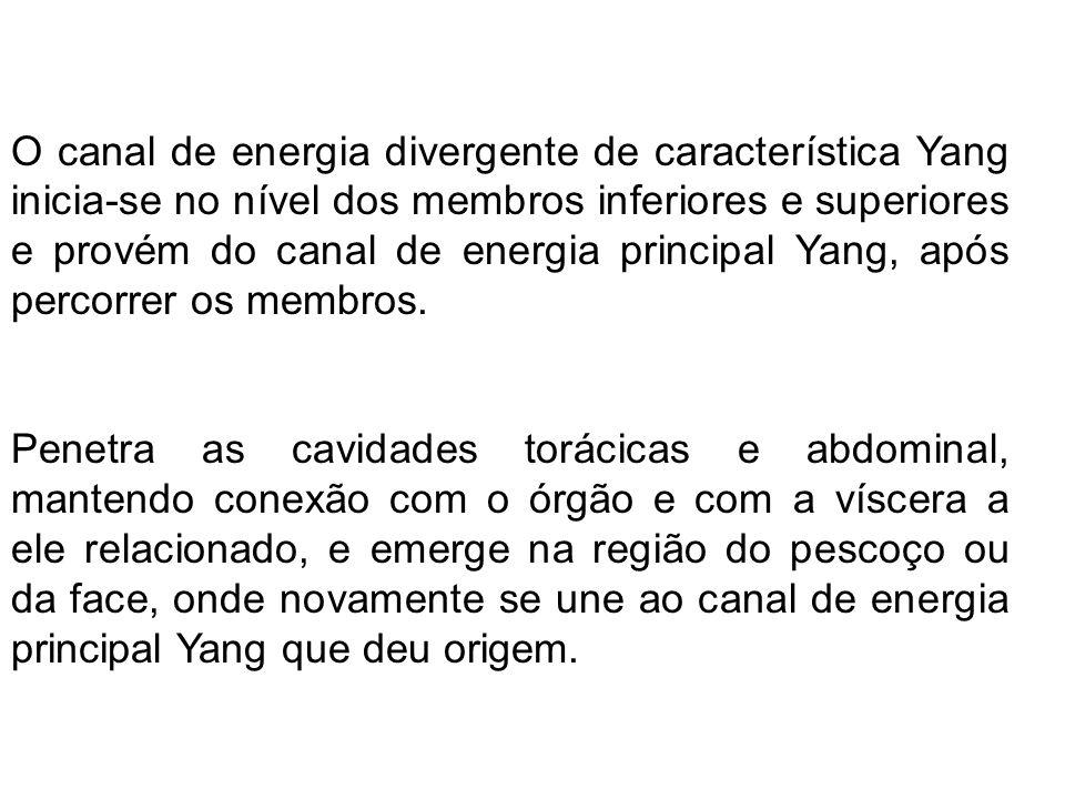 O canal de energia divergente de característica Yang inicia-se no nível dos membros inferiores e superiores e provém do canal de energia principal Yan