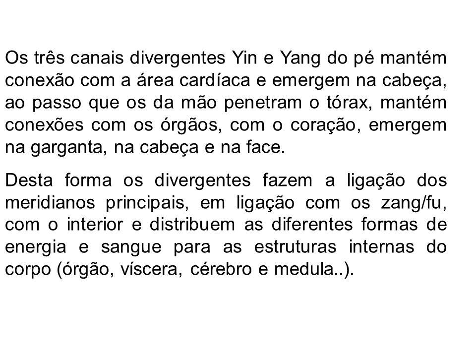 É importante para compreender a ligação dos zang/fu entre si, como ocorre entre o C e o R, entre E e C, das influências de um órgão sobre o outro, e da ligação entre um hemicorpo e outro, importante para manter a harmonia entre o D e E, entre Yin e Yang, entre Qi e Xue.