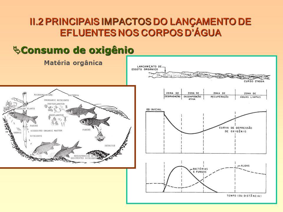 II.2 PRINCIPAIS IMPACTOS DO LANÇAMENTO DE EFLUENTES NOS CORPOS DÁGUA Consumo de oxigênio Consumo de oxigênio Matéria orgânica