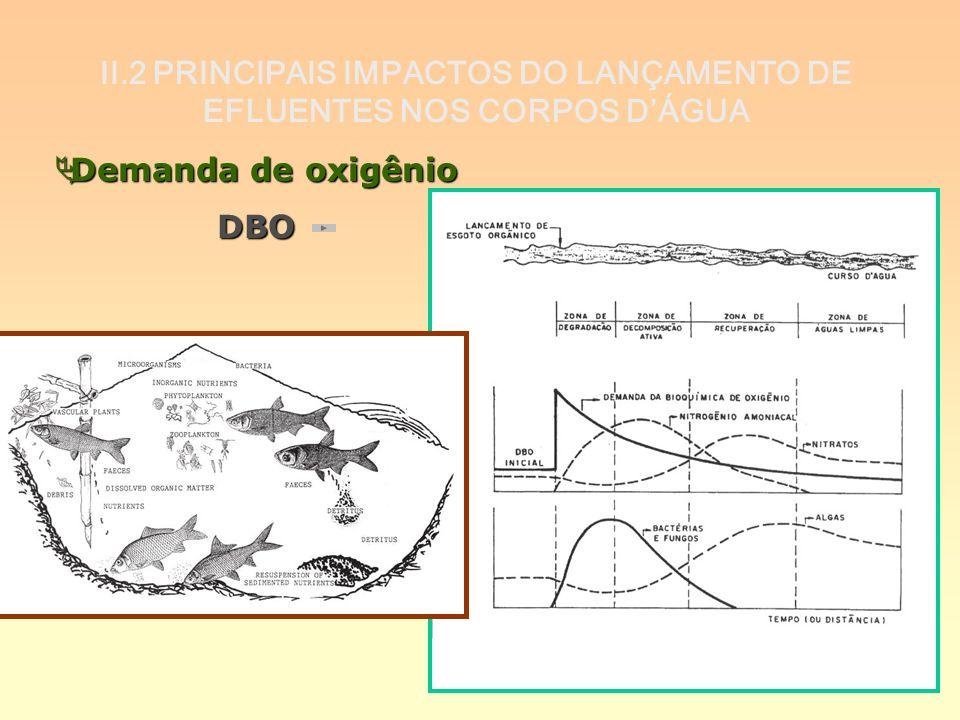 II.2 PRINCIPAIS IMPACTOS DO LANÇAMENTO DE EFLUENTES NOS CORPOS DÁGUA Demanda de oxigênio Demanda de oxigênioDBO