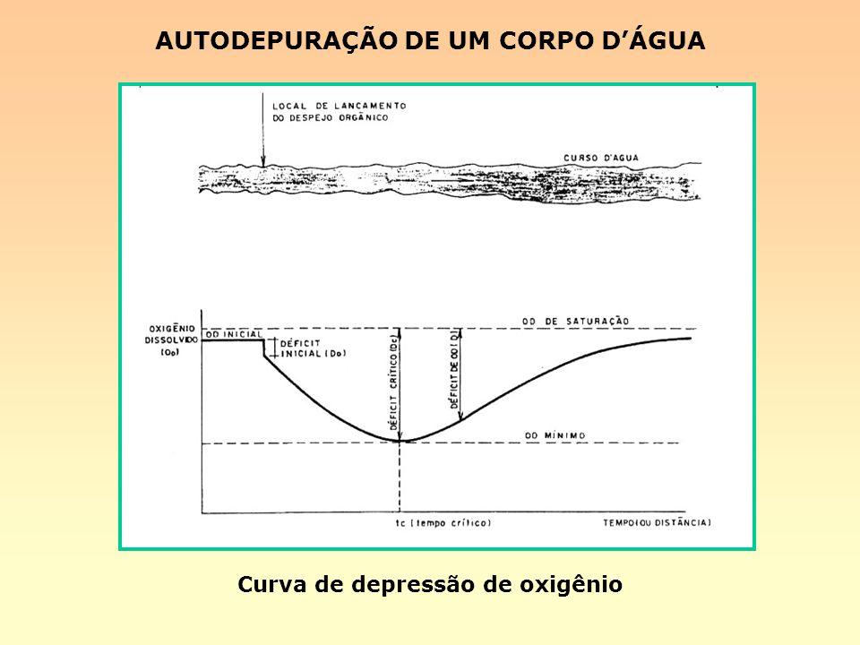 Curva de depressão de oxigênio AUTODEPURAÇÃO DE UM CORPO DÁGUA