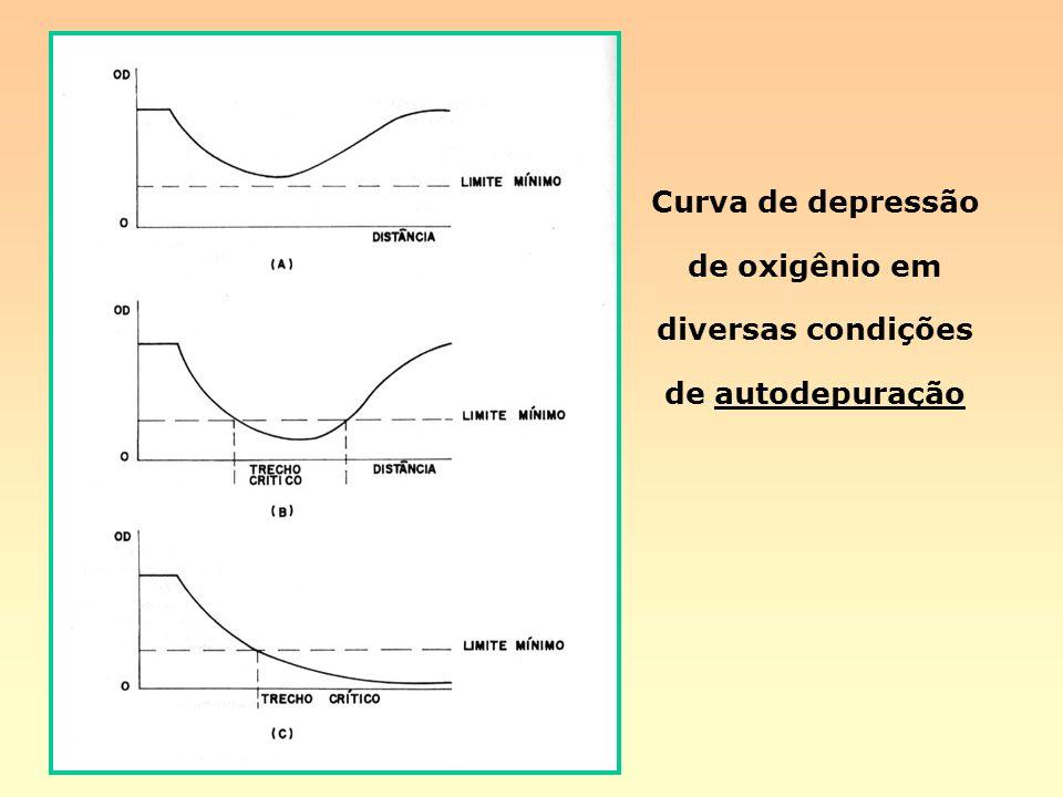 Curva de depressão de oxigênio em diversas condições de autodepuração