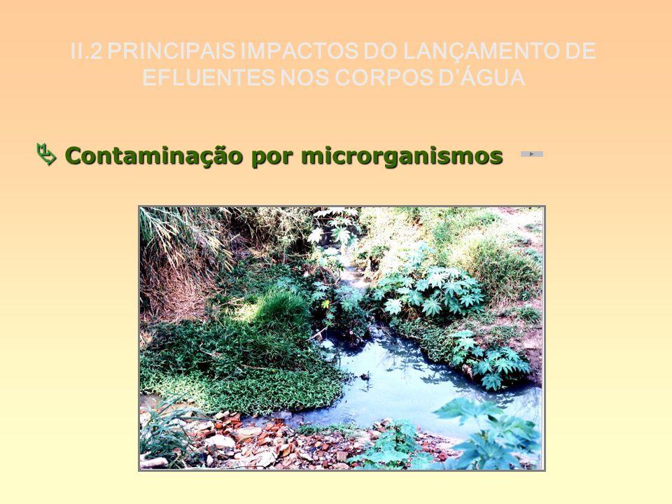 II.2 PRINCIPAIS IMPACTOS DO LANÇAMENTO DE EFLUENTES NOS CORPOS DÁGUA Contaminação por microrganismos Contaminação por microrganismos