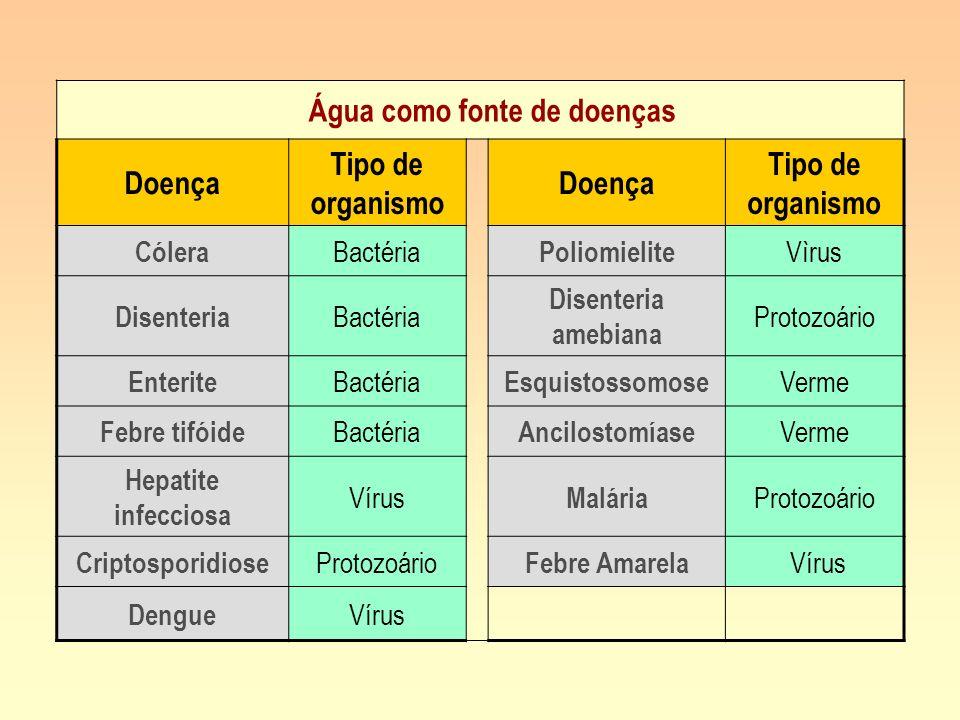 Água como fonte de doenças Doença Tipo de organismo Doença Tipo de organismo Cólera Bactéria Poliomielite Vìrus Disenteria Bactéria Disenteria amebian