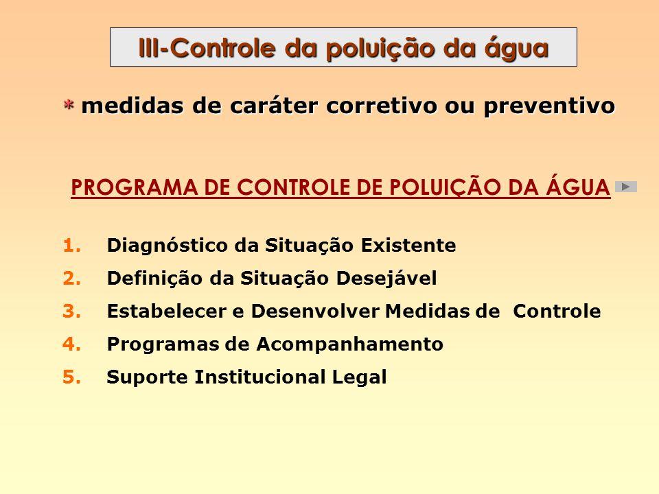 III-Controle da poluição da água PROGRAMA DE CONTROLE DE POLUIÇÃO DA ÁGUA 1. Diagnóstico da Situação Existente 2. Definição da Situação Desejável 3. E