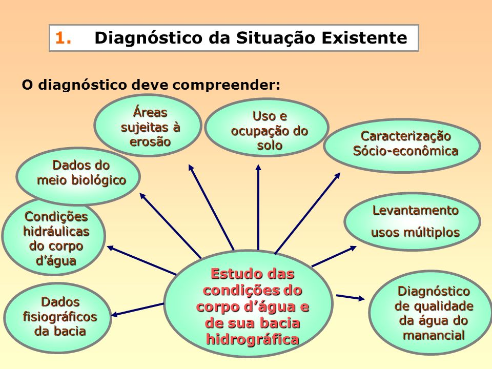1. Diagnóstico da Situação Existente O diagnóstico deve compreender: Dados fisiográficos da bacia Condições hidráulicas do corpo dágua Diagnóstico de
