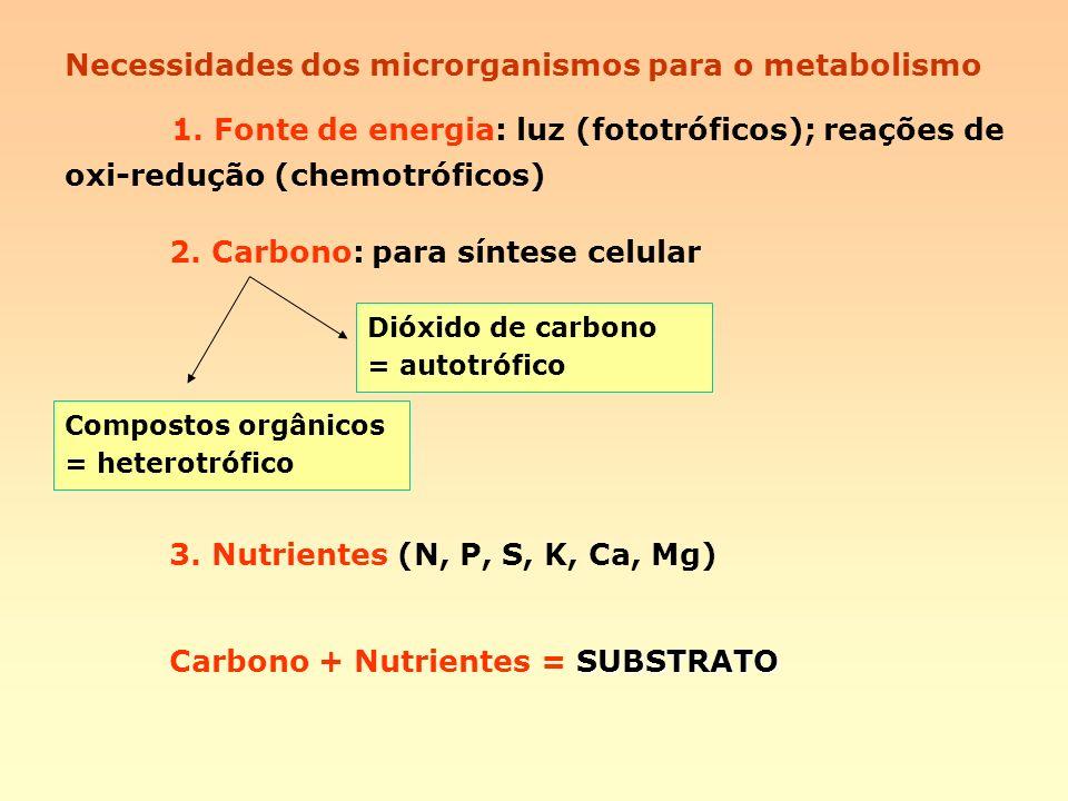 Necessidades dos microrganismos para o metabolismo 1. Fonte de energia: luz (fototróficos); reações de oxi-redução (chemotróficos) 2. Carbono: para sí