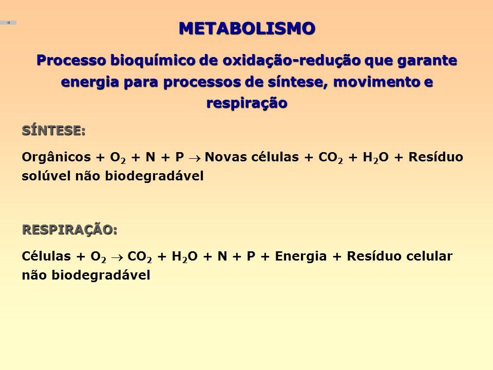 METABOLISMO Processo bioquímico de oxidação-redução que garante energia para processos de síntese, movimento e respiração SÍNTESE: Orgânicos + O 2 + N