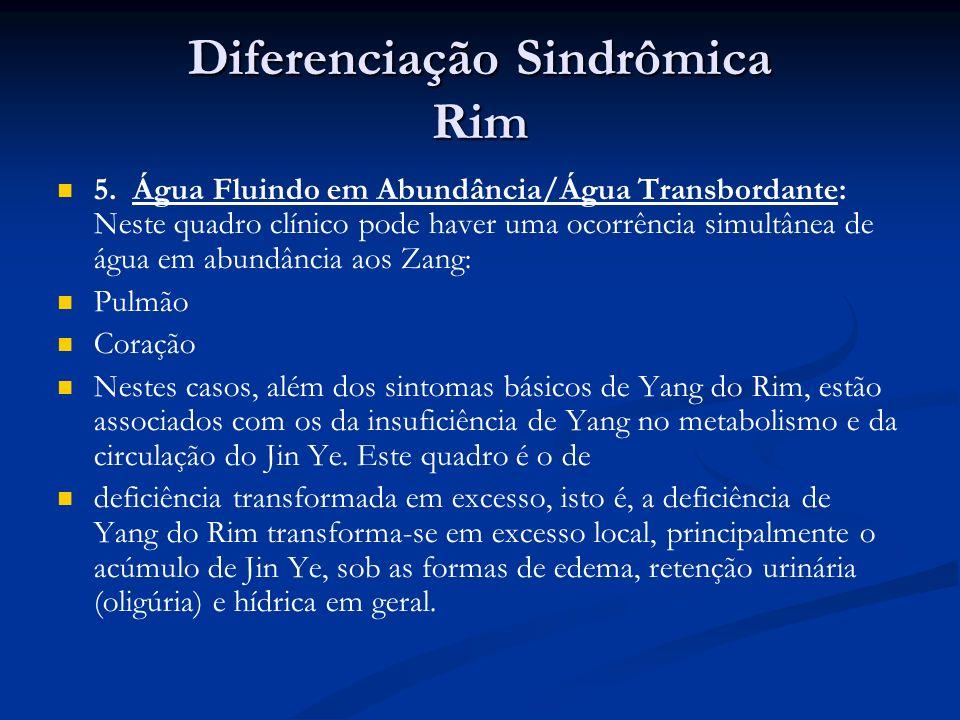 Diferenciação Sindrômica Rim 5.