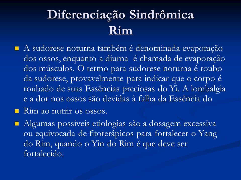 Diferenciação Sindrômica Rim A sudorese noturna também é denominada evaporação dos ossos, enquanto a diurna é chamada de evaporação dos músculos.