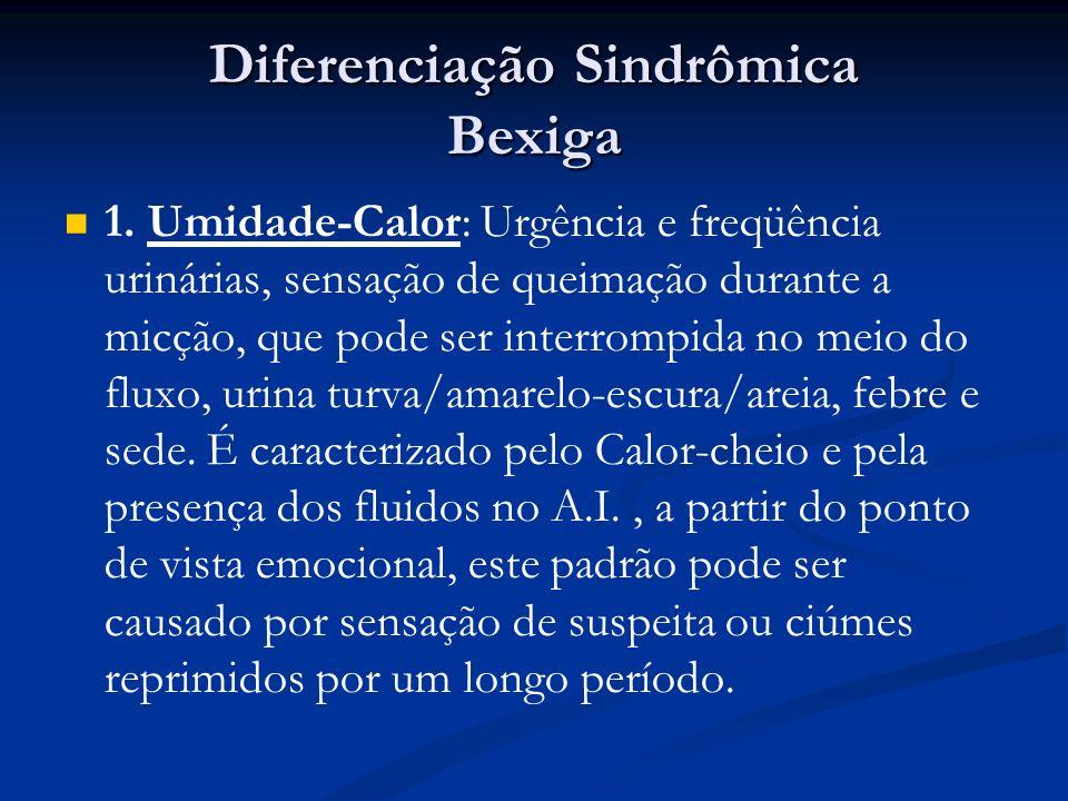 Diferenciação Sindrômica Bexiga 1.
