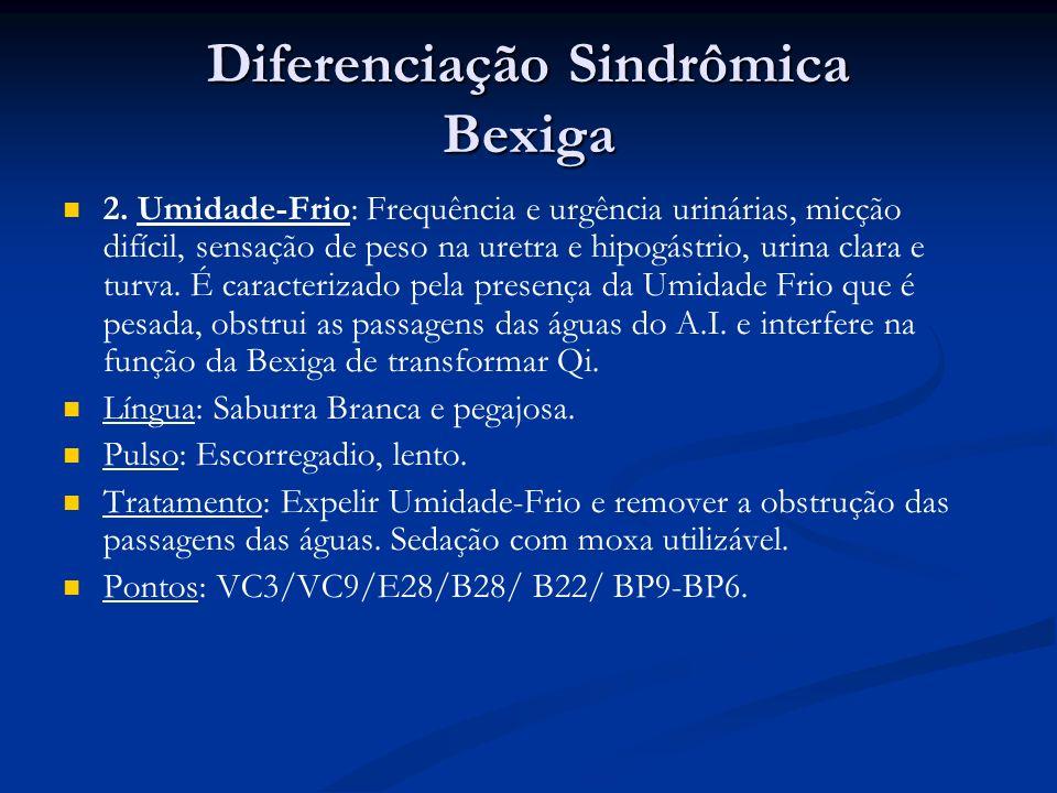 Diferenciação Sindrômica Bexiga 2.