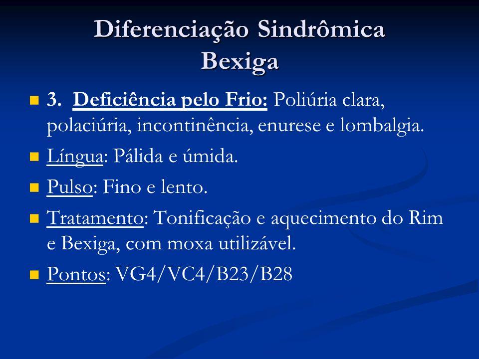 Diferenciação Sindrômica Bexiga 3.