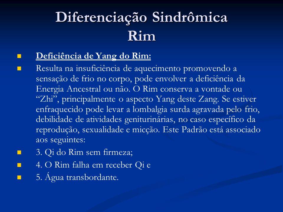 Diferenciação Sindrômica Rim Deficiência de Yang do Rim: Resulta na insuficiência de aquecimento promovendo a sensação de frio no corpo, pode envolver a deficiência da Energia Ancestral ou não.