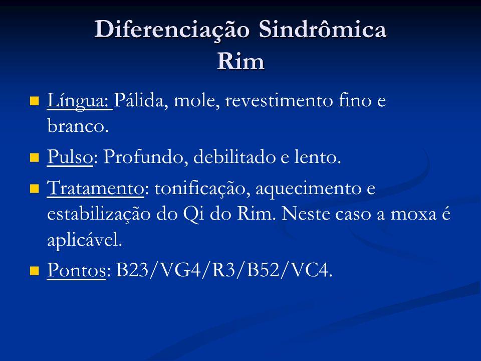 Diferenciação Sindrômica Rim Língua: Pálida, mole, revestimento fino e branco.