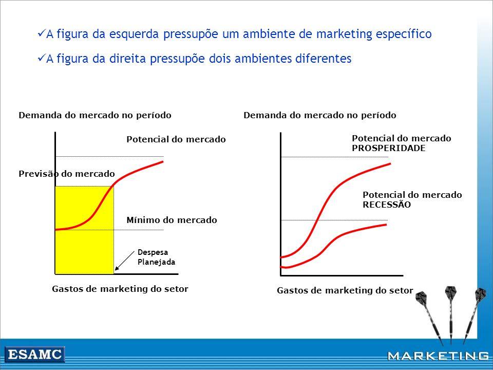 Gastos de marketing do setor Demanda do mercado no período Mínimo do mercado Potencial do mercado Previsão do mercado Gastos de marketing do setor Dem