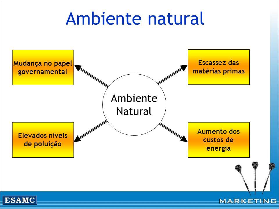 Ambiente natural Escassez das matérias primas Aumento dos custos de energia Mudança no papel governamental Elevados níveis de poluição Ambiente Natura