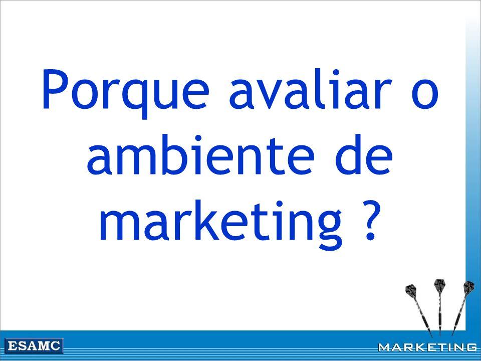 Porque avaliar o ambiente de marketing ?