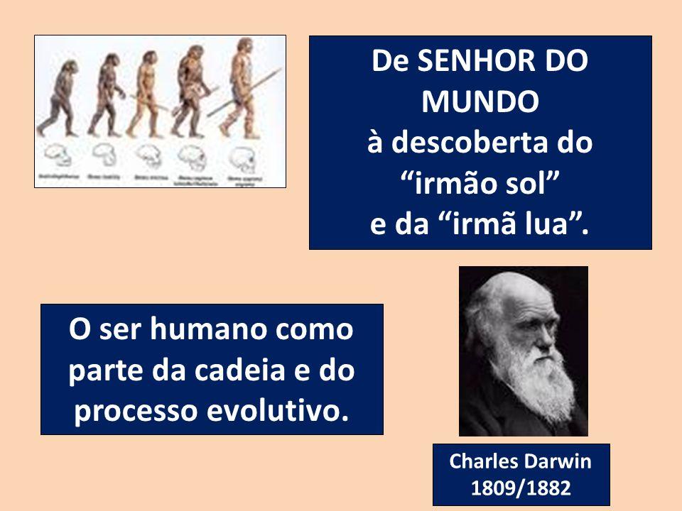 De SENHOR DO MUNDO à descoberta do irmão sol e da irmã lua. O ser humano como parte da cadeia e do processo evolutivo. Charles Darwin 1809/1882