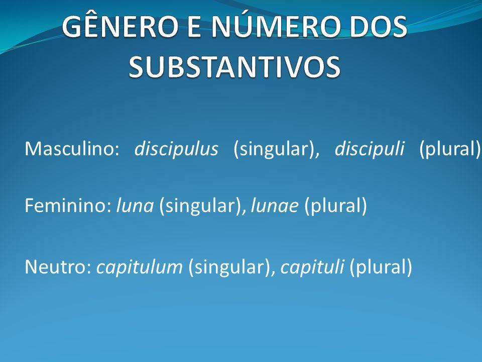Masculino: discipulus (singular), discipuli (plural) Feminino: luna (singular), lunae (plural) Neutro: capitulum (singular), capituli (plural)