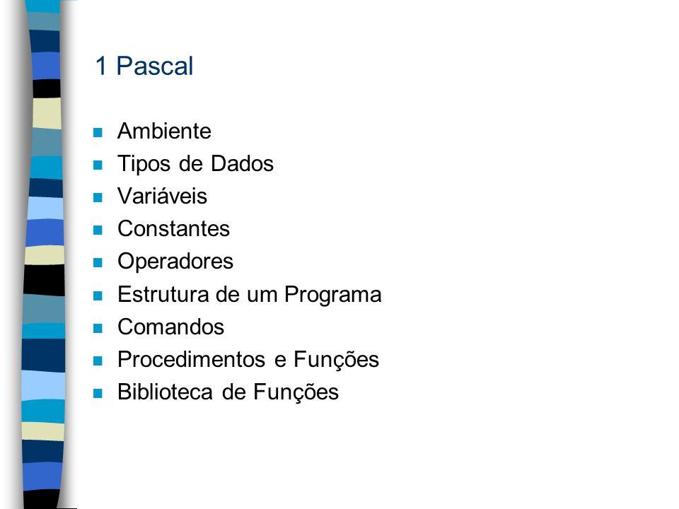 1 Pascal n Ambiente n Tipos de Dados n Variáveis n Constantes n Operadores n Estrutura de um Programa n Comandos n Procedimentos e Funções n Bibliotec