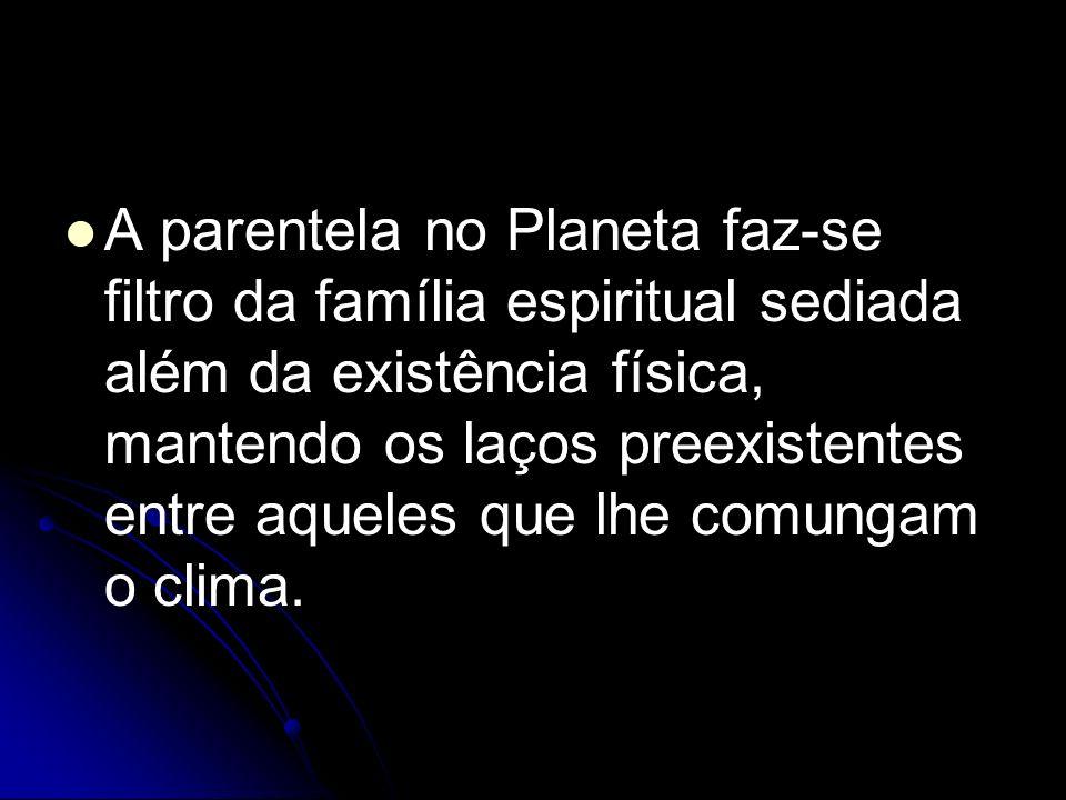 A parentela no Planeta faz-se filtro da família espiritual sediada além da existência física, mantendo os laços preexistentes entre aqueles que lhe co