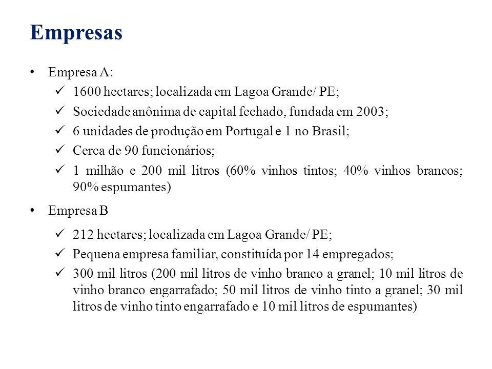 Empresas Empresa A: 1600 hectares; localizada em Lagoa Grande/ PE; Sociedade anônima de capital fechado, fundada em 2003; 6 unidades de produção em Po