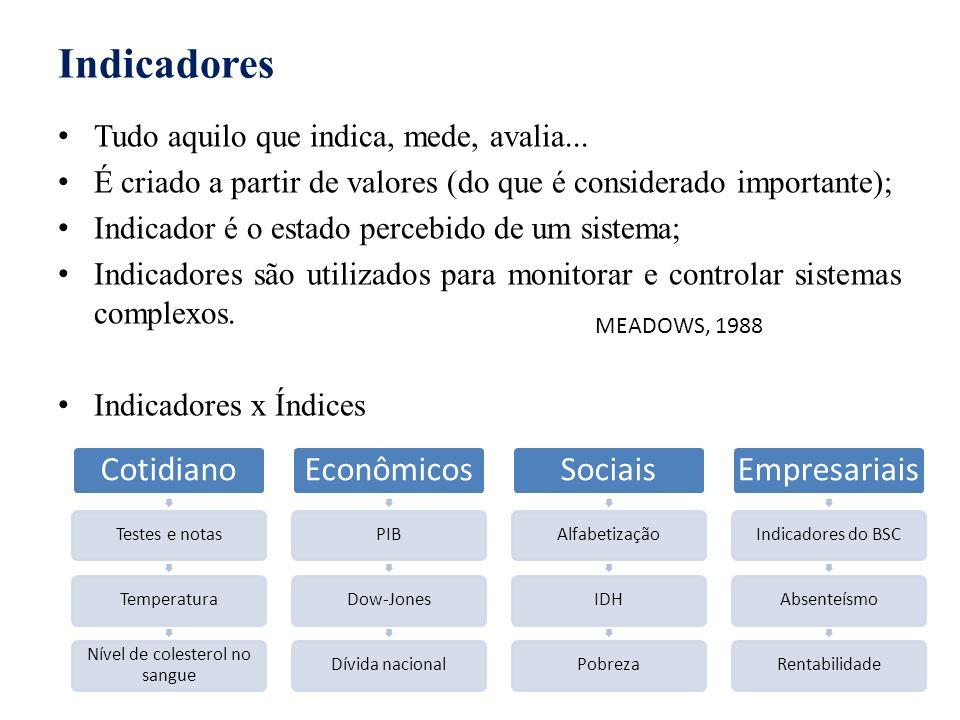 Indicadores Tudo aquilo que indica, mede, avalia... É criado a partir de valores (do que é considerado importante); Indicador é o estado percebido de