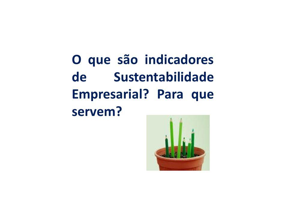 Indicadores de Sustentabilidade Empresarial São parâmetros utilizados pelas empresas para monitorar os avanços ou retrocessos em relação às metas de sustentabilidade empresarial; Permitem mensurar o desempenho de ações e programas desenvolvidos pelas empresas por meio de aspectos econômicos, sociais e ambientais; São úteis para o alcance das metas globais que dizem respeito ao desenvolvimento sustentável