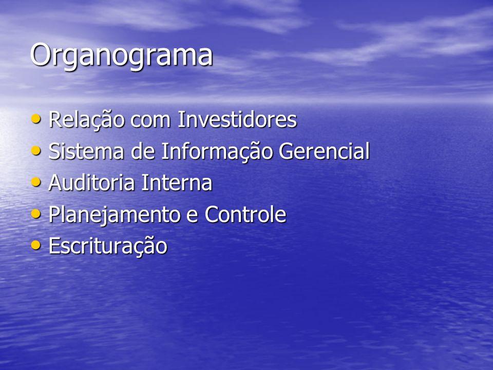 Organograma Relação com Investidores Relação com Investidores Sistema de Informação Gerencial Sistema de Informação Gerencial Auditoria Interna Audito