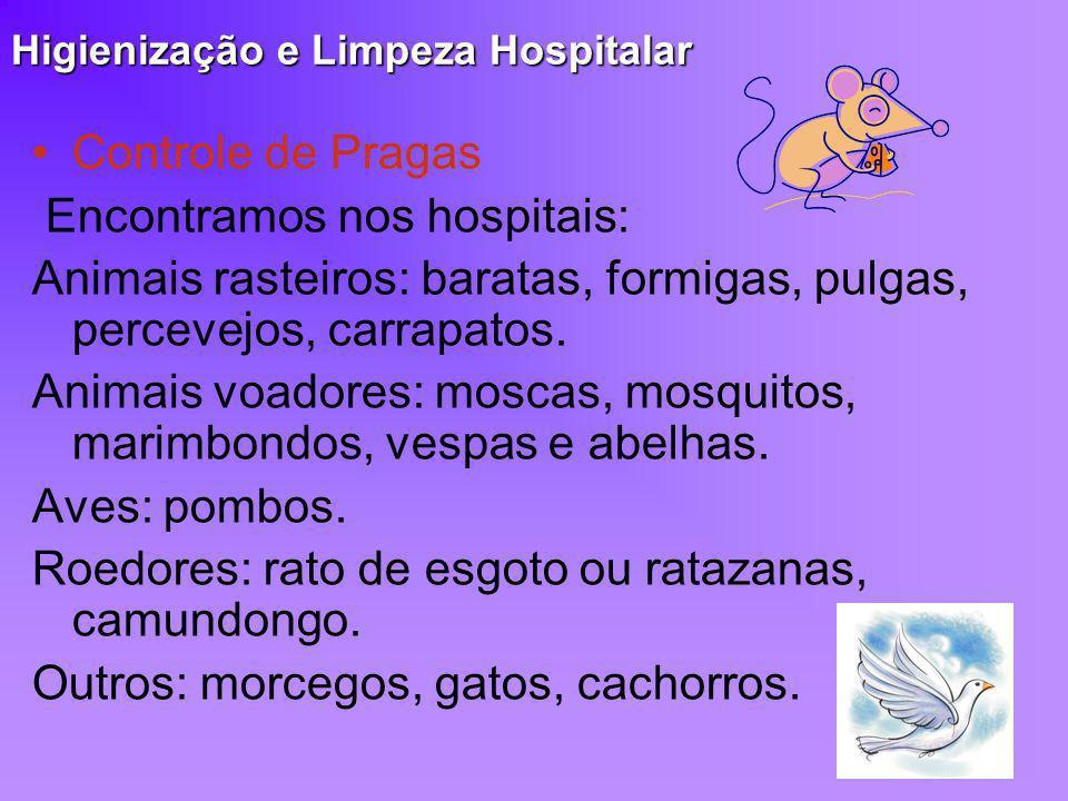 Higienização e Limpeza Hospitalar Controle de Pragas Encontramos nos hospitais: Animais rasteiros: baratas, formigas, pulgas, percevejos, carrapatos.