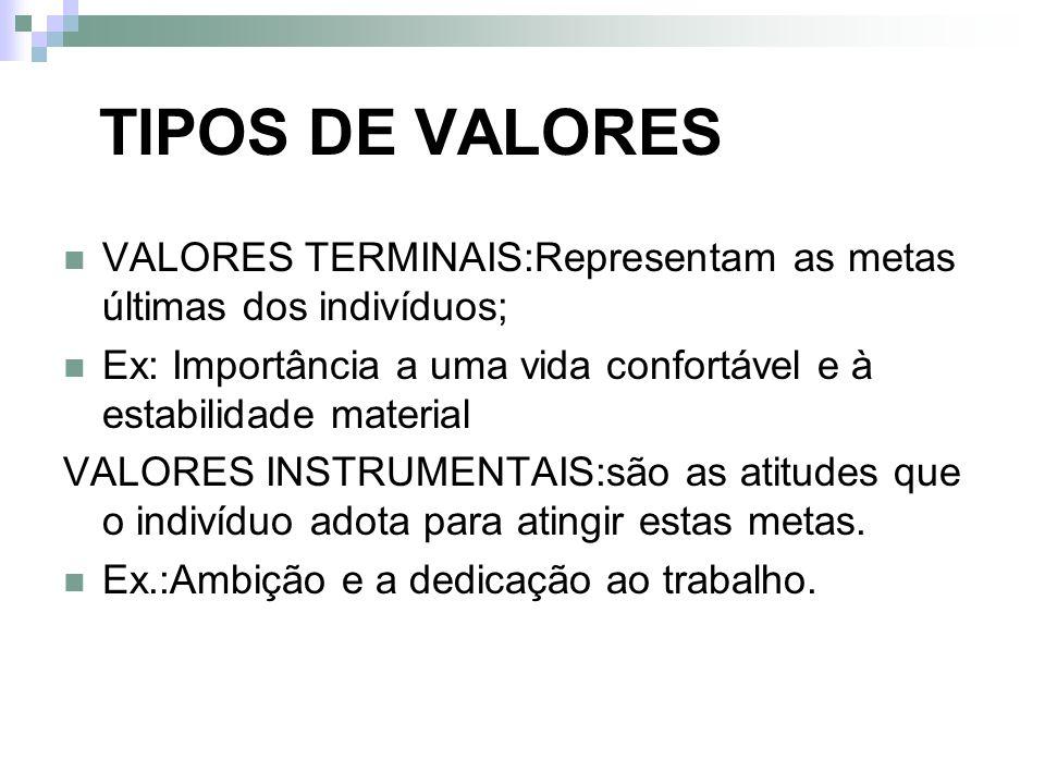 TIPOS DE VALORES VALORES TERMINAIS:Representam as metas últimas dos indivíduos; Ex: Importância a uma vida confortável e à estabilidade material VALOR