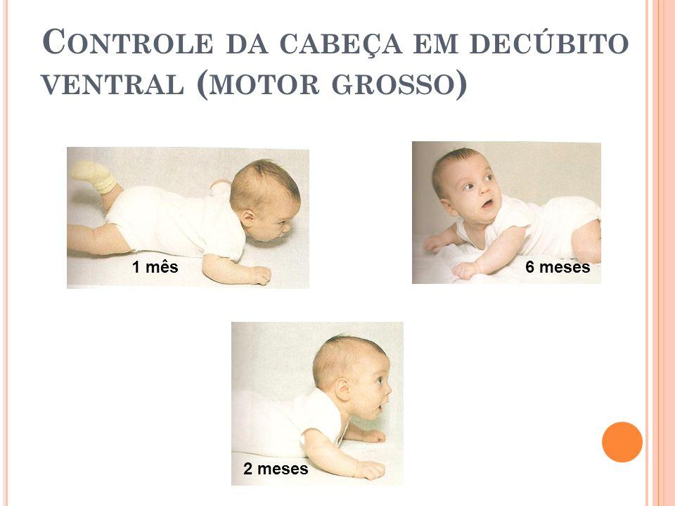 C ONTROLE DA CABEÇA EM DECÚBITO VENTRAL ( MOTOR GROSSO ) 1 mês 2 meses 6 meses