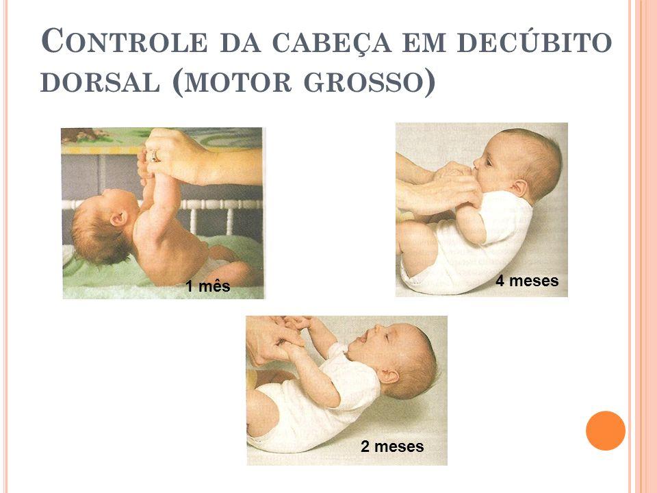 C ONTROLE DA CABEÇA EM DECÚBITO DORSAL ( MOTOR GROSSO ) 1 mês 2 meses 4 meses