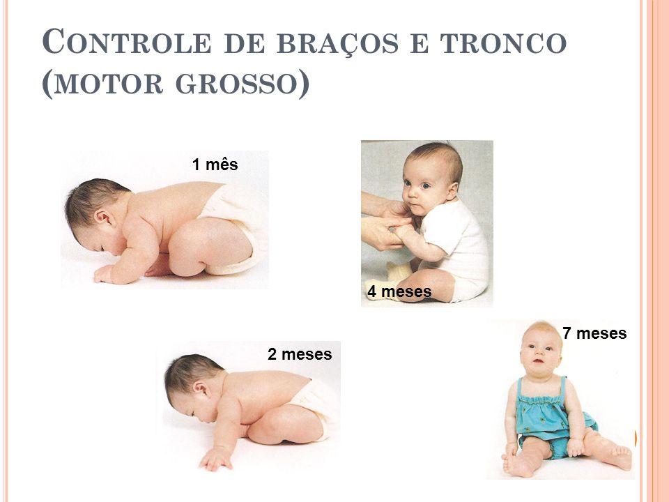 C ONTROLE DE BRAÇOS E TRONCO ( MOTOR GROSSO ) 1 mês 2 meses 4 meses 7 meses